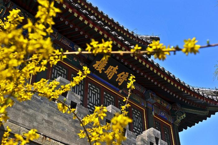 Пекинская весна