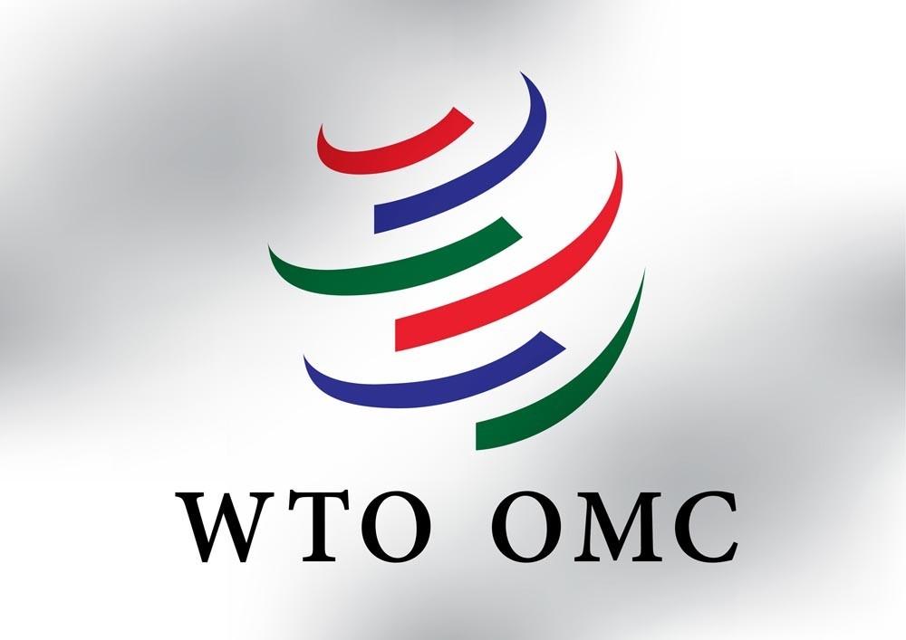 В ходе реформирования ВТО необходимо воздержаться от критики в адрес Китая