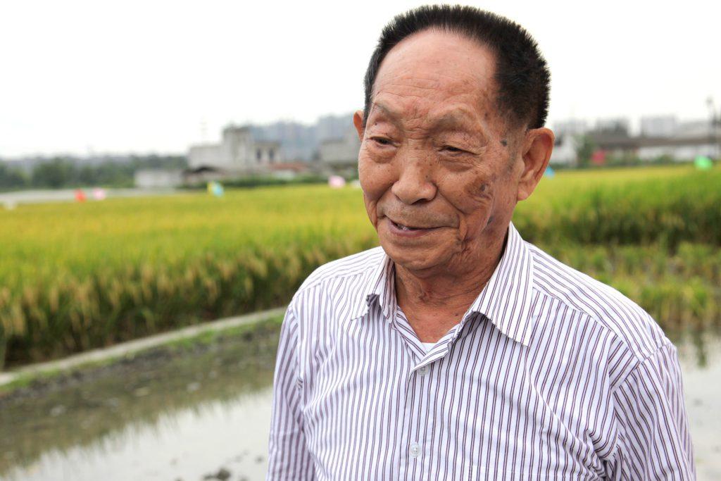 Он накормил мир: в мире вспоминают отца гибридного риса