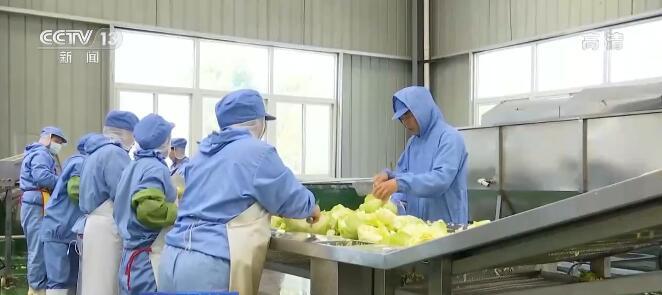 Китайский сельхозсектор восстановился от удара COVID-19