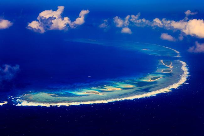 На архипелаге Сиша зарегистрировано более 500 видов растений