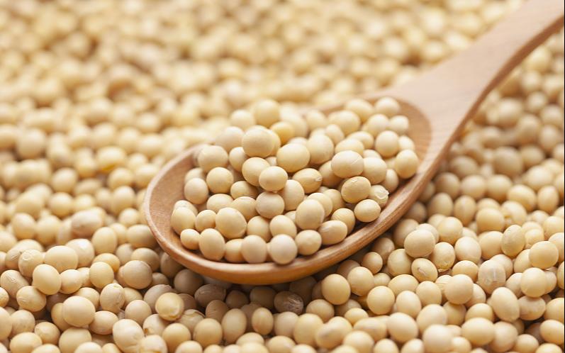 C начала года объем экспорта сои из Приамурья в Китай превысил показатель всего 2020 года