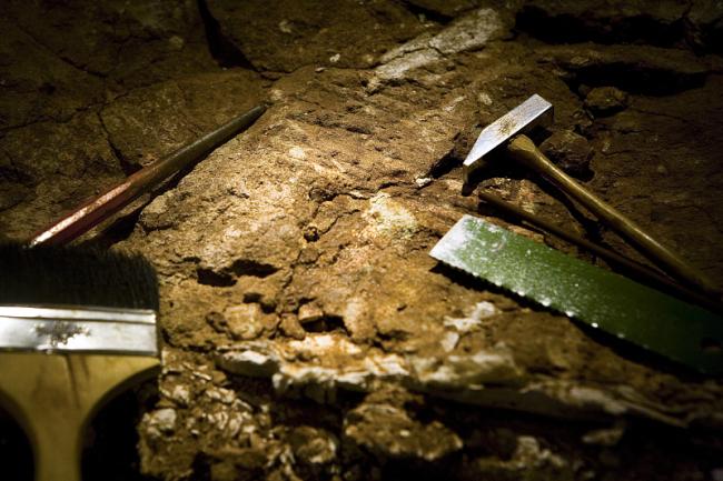 Хакасия стала местом встречи археологов Китая, Монголии и России